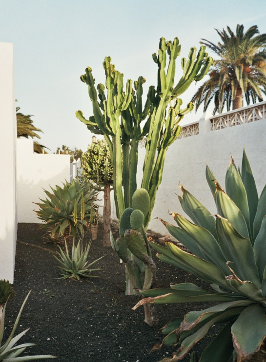 Becca-Horn-Fuerteventura-03