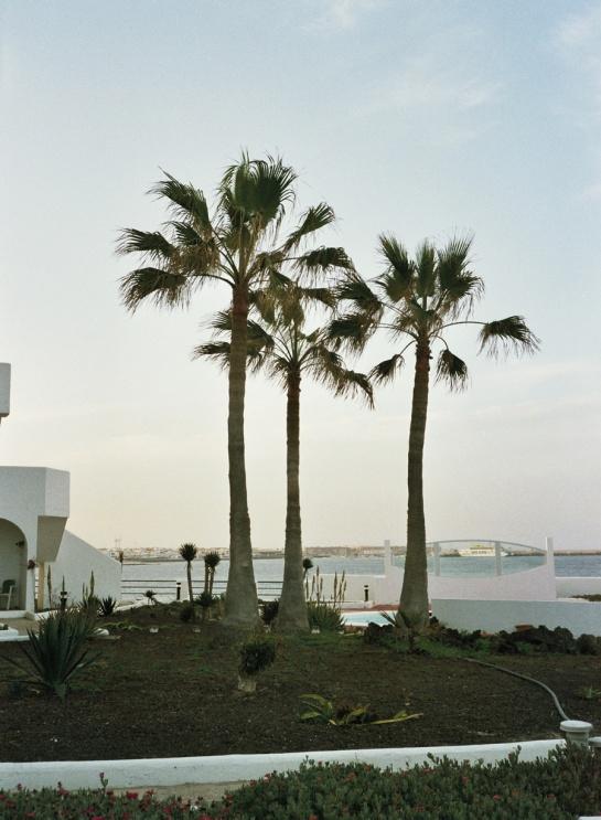 Becca-Horn-Fuerteventura-12